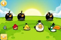 Angry Birds Golden Egg Star Walkthrough Level 12