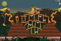 Angry Birds Rio Banana Walkthrough Level 14 (3-14)