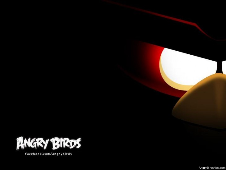 Angry Birds They're Coming Teaser Image