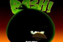 Angry Birds Space Big Brother Bird iPad Wallpaper