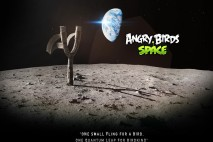 Angry Birds Space Moon Slingshot iPad Wallpaper