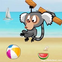 Angry Birds Rio Avatar Marmoset Hanging