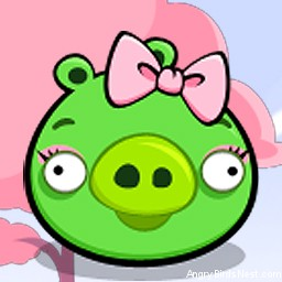 Angry Birds Seasons Avatar Pig Girl