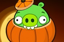Angry Birds Seasons Avatar Pig in Pumpkin
