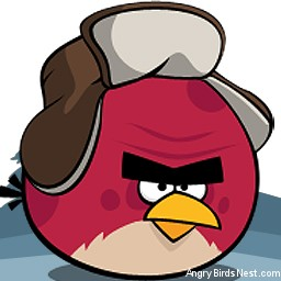 Angry Birds Seasons Avatar Terence in Snow Hat