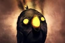 Angry Kamikaze by PointLineArea