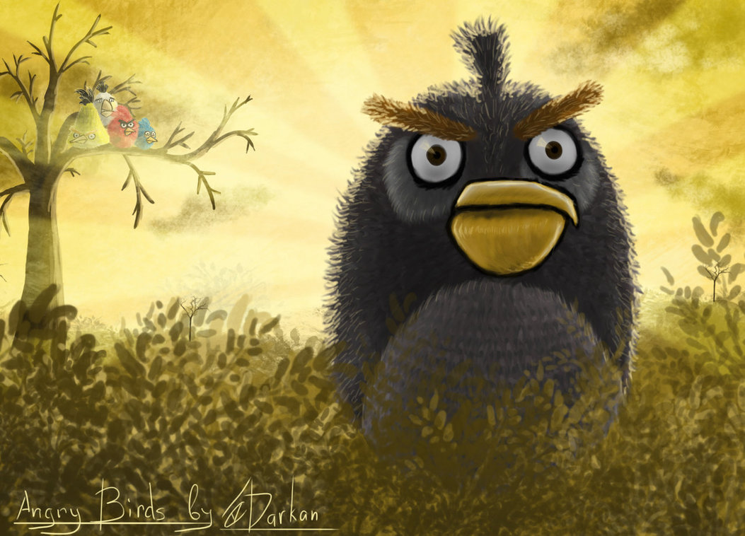 Angry Birds by Darkan