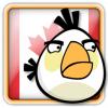 Angry Birds Canada Avatar 2