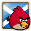 Angry Birds Scotland Avatar 1