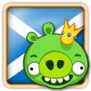 Angry Birds Scotland Avatar 4