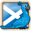 Angry Birds Scotland Avatar 6
