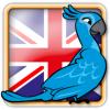 Angry Birds UK Avatar Avatar 6