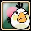 Angry Birds Bangladesh Avatar 2