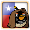 Angry Birds Chile Avatar 10