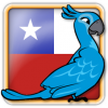 Angry Birds Chile Avatar 6