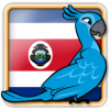 Angry Birds Costa Rica Avatar 6