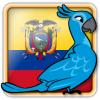 Angry Birds Ecuador Avatar 6