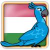 Angry Birds Hungary Avatar 6
