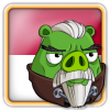 Angry Birds Indonesia Avatar 12