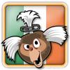 Angry Birds Ireland Avatar 5