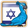 Angry Birds Israel Avatar 6