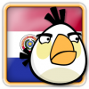 Angry Birds Paraguay Avatar 2