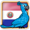 Angry Birds Paraguay Avatar 6