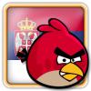 Angry Birds Serbia Avatar 1