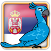 Angry Birds Serbia Avatar 6