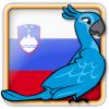 Angry Birds Slovenia Avatar 6