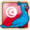 Angry Birds Tunisia Avatar 6