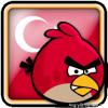 Angry Birds Turkey Avatar 1