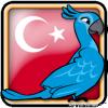 Angry Birds Turkey Avatar 6