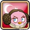 Angry Birds Turkey Avatar 9