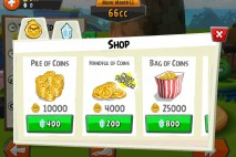 Coins in Shop