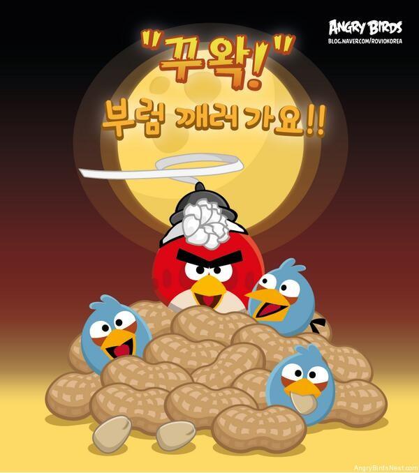 Angry Birds Jeongwol Daeboreum Teaser