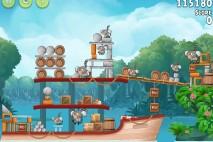 Angry Birds Rio Blossom River Walkthrough Level #19