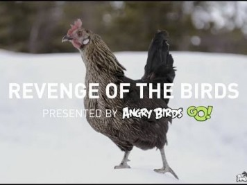 Revenge of the Angry Birds Video