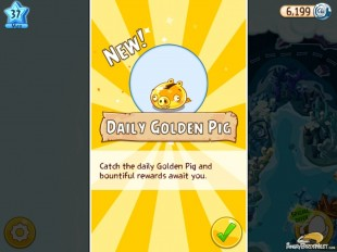 Angry Birds Epic Daily Golden Pig