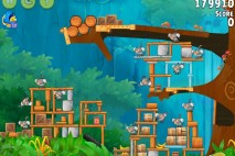 Angry Birds Rio Gear #9 Walkthrough Level 17