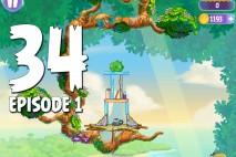 Angry Birds Stella Level 34 Episode 1 Walkthrough