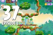 Angry Birds Stella Level 37 Episode 1 Walkthrough