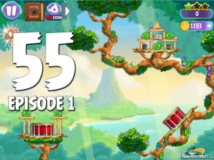 Angry Birds Stella Level 55 Episode 1 Walkthrough