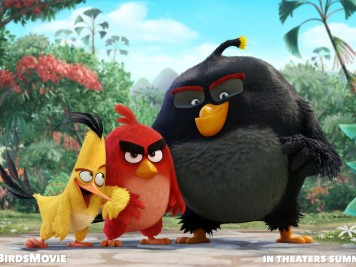 Those are some BIG birds!