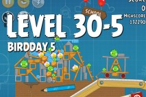 Angry Birds BirdDay 5 Level 30-5 Walkthrough
