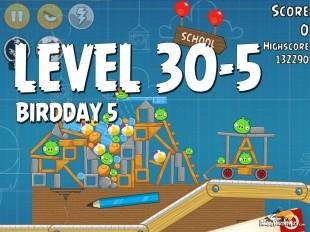 Angry Birds BirdDay 5 Level 30-5 Walkthrough