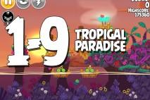 Angry Birds Seasons Tropigal Paradise Level 1-9 Walkthrough