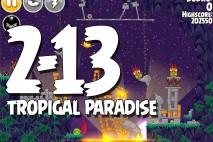 Angry Birds Seasons Tropigal Paradise Level 2-13 Walkthrough