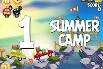 Angry Birds Seasons Summer Camp Level 1-1 Walkthrough