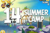 Angry Birds Seasons Summer Camp Level 1-14 Walkthrough